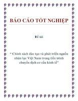 """Đề tài """" Chính sách đào tạo và phát triển nguồn nhân lực Việt Nam trong tiến trình chuyển dịch cơ cấu kinh tế"""" ppt"""