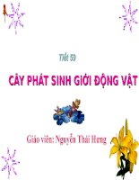 tiet 59 Cay phat sinh gioi dong vat docx