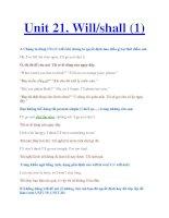 Unit 21. Will/shall (1) pdf