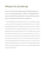 Phòng trừ sâu đục thân ngô pdf