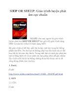 SHIP OR SHEEP: Giáo trình luyện phát âm cực chuẩn docx