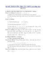 60 ĐỀ TOÁN ÔN THI TN THPT (có đáp án)Đề số 12 pdf
