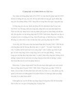 Về pháp luật xử lý hành chính của Việt Nam doc