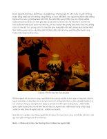 Kinh doanh trà hoa: Kế thừa và phát huy những giá trị văn hóa truyền thống pptx