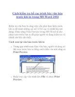 Cách kiểm tra bố cục trình bày văn bản trước khi in trong MS Word 2003 potx