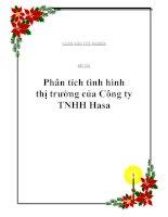 """Đề tài: """"Phân tích tình hình thị trường của Công ty TNHH Hasa"""" doc"""