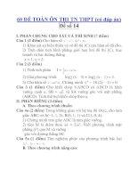 60 ĐỀ TOÁN ÔN THI TN THPT (có đáp án) Đề số 14 ppt