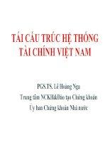 Tái cấu trúc hệ thống tài chính Việt Nam pdf