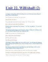 Unit 22. Will/shall (2) pptx