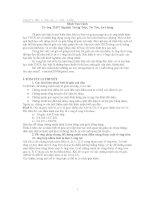 Chuyên đề tứ giác nội tiếp (toán lớp 9)