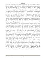 tiểu luận Quảng cáo Thương mại trong Pháp luật Thương mại Việt NamMột số vấn đề về lý luận và thực tiễn