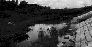 Đánh giá hiện trạng xả thải và đề xuất giải pháp bảo vệ môi trường nước mặt sông Ba Lai trên địa bàn huyện Giồng Trôm tỉnh Bến Tre đến năm 2020