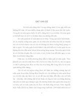 ĐÁNH GIÁ KẾT QUẢ ĐIỀU TRỊ SỎI NIỆU QUẢN BẰNG TÁN SỎI NỘI SOI VỚI NGUỒN NĂNG LƯỢNG XUNG HƠI TẠI BỆNH VIỆN ĐA KHOA TRUNG ƯƠNG THÁI NGUYÊN