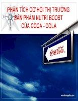 Phân tích cơ hội thị trường sản phẩm nutri boost của coca cola