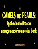 camels and pearls application to financial management of commercial banks