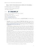 tiểu luận  phân tích hoạt động kinh doanh công ty vinamilk
