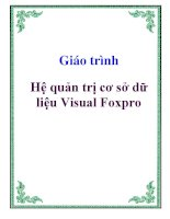 Giáo trình: Hệ quản trị cơ sở dữ liệu Visual Foxpro docx