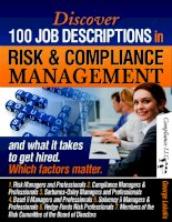 job descriptions in risk and compliance management docx