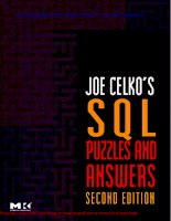 Joe Celko''''s SQL Puzzles and Answers, Second Edition, Second Edition pot