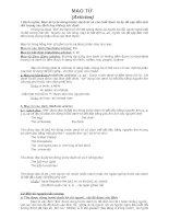 MẠO TỪ (Articles) docx