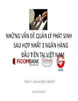 Những vấn đề quản lý phát sinh sau hợp nhất 3 ngân hàng đầu tiên tại Việt Nam doc