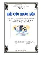 BIA B CAO docx