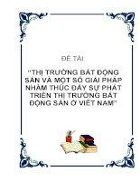 Thị trường bất động sản và một số giải pháp nhằm thúc đẩy sự phát triển thị trường bất động sản ở Việt Nam potx