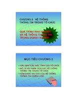 HỆ THỐNG THÔNG TIN TRONG TỔ CHỨC pot