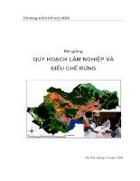 Bài giảng quy hoạch lâm nghiệp điều chế rừng ppt