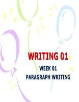 PARAGRAPH WRITING pot
