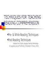 TECHNIQUES FOR TEACHING READING COMPREHENSION ppt
