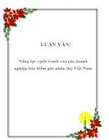 LUẬN VĂN: Năng lực cạnh tranh của các doanh nghiệp bảo hiểm phi nhân thọ Việt Nam pdf