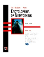 The Encyclopedia of Networking pdf