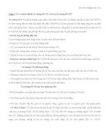 Câu hỏi ôn tập thi cuối kỳ môn Tư Tưởng Hồ Chí Minh pdf