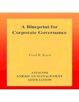 A Blueprint for Corporate Governance potx