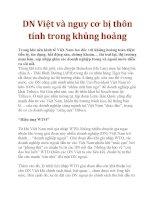 DN Việt và nguy cơ bị thôn tính trong khủng hoảng pdf