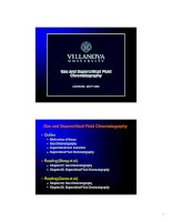 Gas Chromatography and Supercritical Fluid Chromatography docx