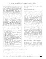 Cơ chế hiện tại về quản lý rủi ro và bảo trợ xã hội ở Việt Nam potx