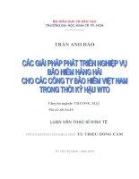 Đề tài : Các giải pháp phát triển nghiệp vụ bảo hiểm hàng hải cho các công ty bảo hiểm Việt Nam trong thời kỳ hậu WTO pot