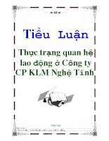Tiểu Luận: Thực trạng quan hệ lao động ở Công ty CP KLM Nghệ Tĩnh doc