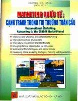 Marketing quốc tế cạnh tranh trong thị trường toàn cầu pot