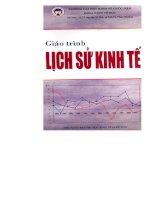 Giáo trình lịch sử kinh tế ppt