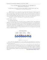 Báo cáo khoa học: Các vấn đề chung về thiết kế tàu đệm khí và khả năng ứng dụng pot