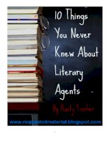 """10 Things You Never Knew About Literary AgentsA """"Special Report"""" by Rusty Fischer pot"""