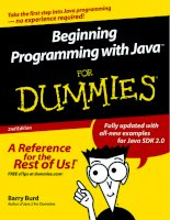 Beginning Programming with Java For Dummies doc