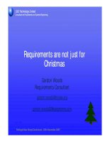 Requirements are not just for Christmas ppt