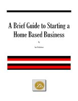 A Brief Guide to Starting a Home Based Business By Ian Nicholson potx
