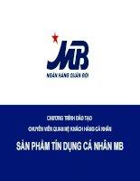 Chương trình đào tạo chuyên viên quan hệ khách hàng cá nhân: Sản phẩm tín dụng cá nhân MB doc