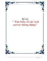 đồ án  tìm hiểu về các web server thông dụng