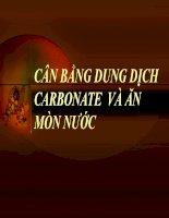 đề tài: CÂN BẰNG DUNG DỊCH CARBONATE VÀ ĂN MÒN ppt